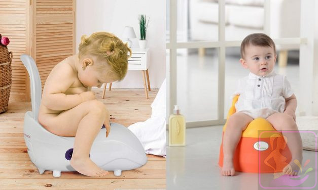 Baby Potty Training Tips and Potty Training Seat Review
